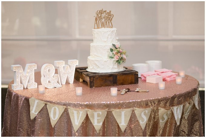 Hampton Virginia Wedding Photographer Pale Pink Blue Succulents Beautiful Virginia Wedding_1215