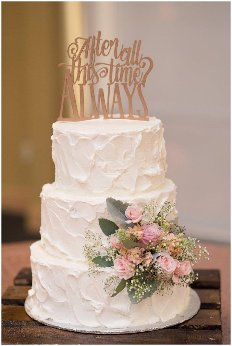 Hampton Virginia Wedding Photographer Pale Pink Blue Succulents Beautiful Virginia Wedding_1220