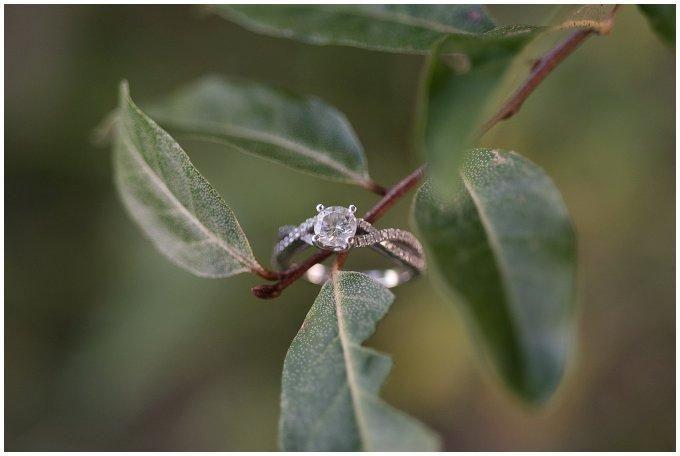 manasas-battlefields-luray-engagement-session-virginia-wedding-photographers_2587