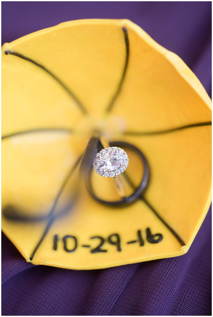 autumn-october-purple-greenbrier-country-club-wedding-virginia-wedding-photographers_2817