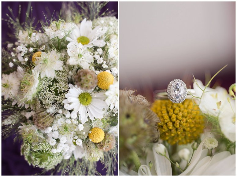autumn-october-purple-greenbrier-country-club-wedding-virginia-wedding-photographers_2826