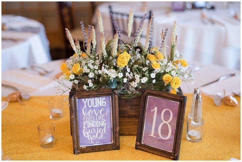autumn-october-purple-greenbrier-country-club-wedding-virginia-wedding-photographers_2943