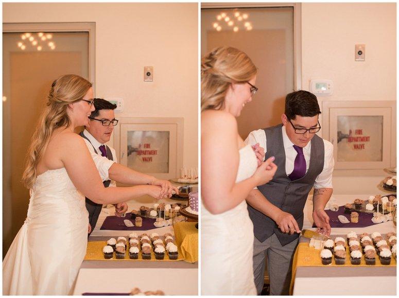 autumn-october-purple-greenbrier-country-club-wedding-virginia-wedding-photographers_3003