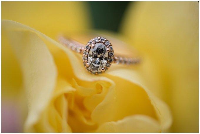 virginia-north-carolina-engagement-wedding-photographers-hampton-roads-virginia-engagement-photos-husband-and-wife-team_3711