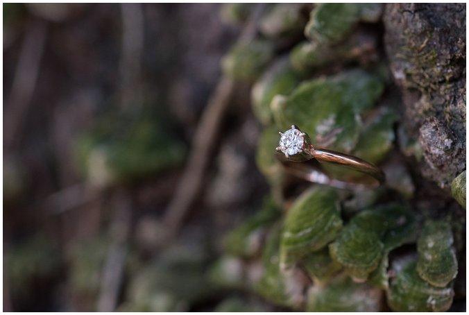 winter-windsor-castle-park-engagement-session-hampton-roads-virginia-wedding-photographers_4113