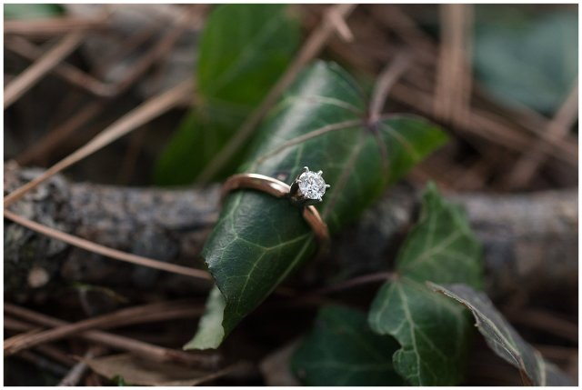 winter-windsor-castle-park-engagement-session-hampton-roads-virginia-wedding-photographers_4116