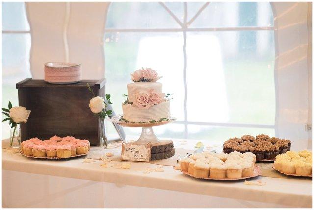 Jasmine Plantation Providence Forge Spring Wedding Virginia Wedding Photographers_4507
