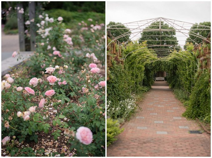 Spring Lewis Ginter Botanical Garden Richmond Virginia Wedding Photographers_4800