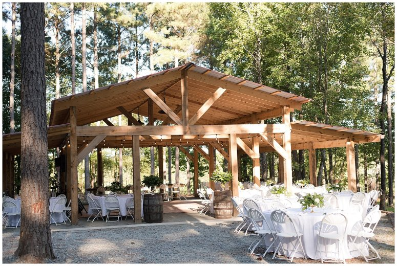 Powder Blue Outdoor September Wedding Springfield Distillery Virginia Wedding Photographers_6410