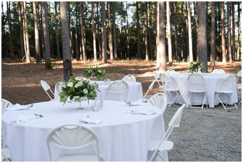 Powder Blue Outdoor September Wedding Springfield Distillery Virginia Wedding Photographers_6411