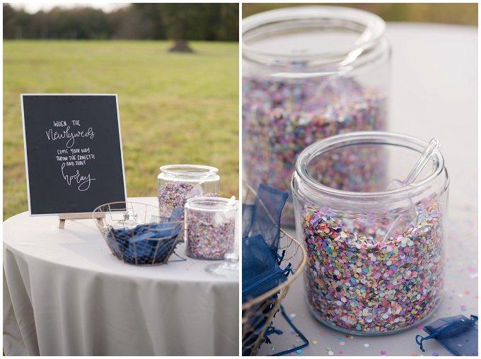Navy Blue and Pink October Backyard North Carolina Wedding Virginia Wedding Photographers_7040
