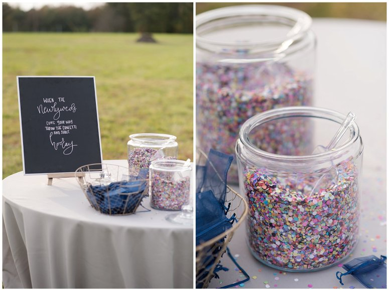 Navy Blue and Pink October Backyard North Carolina Wedding Virginia Wedding Photographers_7040