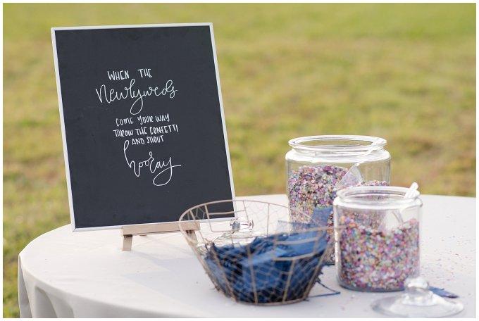Navy Blue and Pink October Backyard North Carolina Wedding Virginia Wedding Photographers_7041