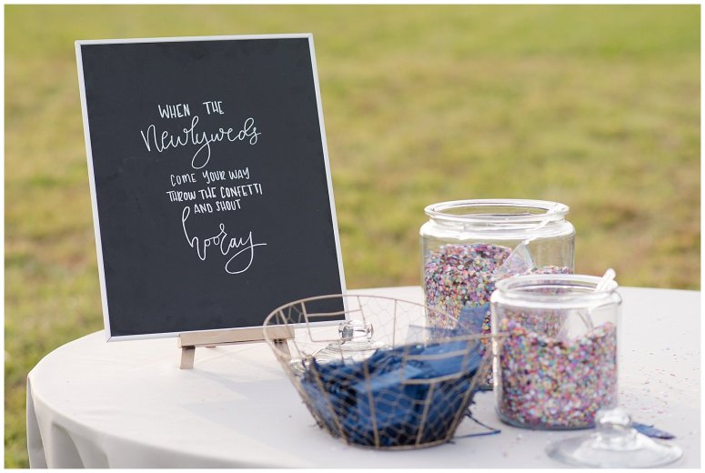 Navy Blue and Pink October Backyard North Carolina Wedding Virginia Wedding Photographers_7041