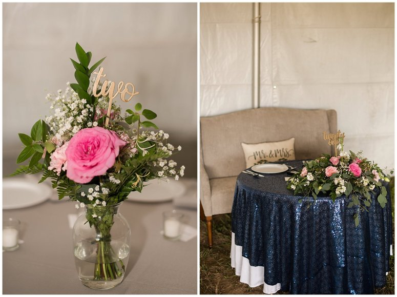 Navy Blue and Pink October Backyard North Carolina Wedding Virginia Wedding Photographers_7060
