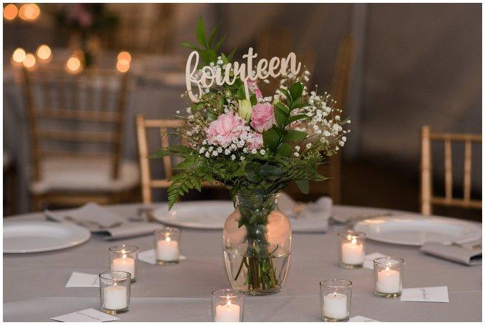 Navy Blue and Pink October Backyard North Carolina Wedding Virginia Wedding Photographers_7061