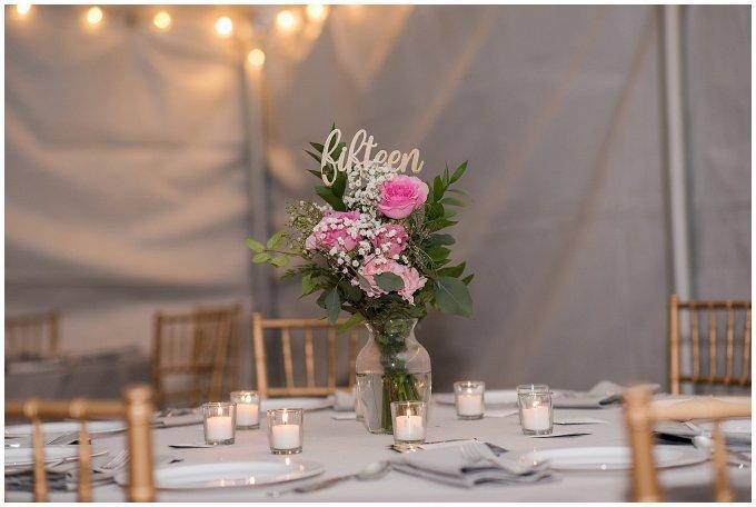 Navy Blue and Pink October Backyard North Carolina Wedding Virginia Wedding Photographers_7063