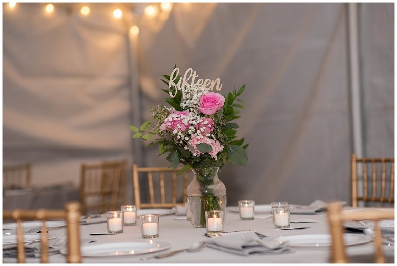 Navy Blue and Pink October Backyard North Carolina Wedding Virginia Wedding Photographers_7063