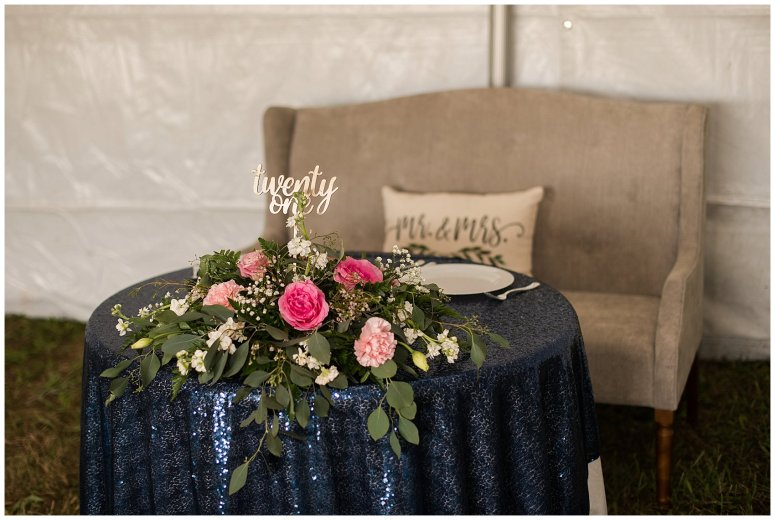 Navy Blue and Pink October Backyard North Carolina Wedding Virginia Wedding Photographers_7064