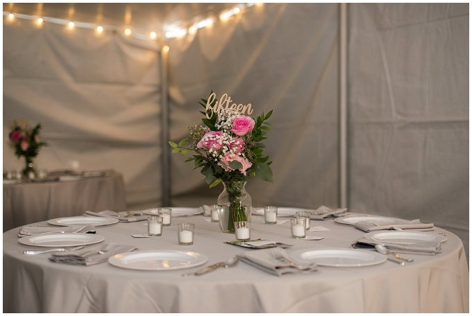 Navy Blue and Pink October Backyard North Carolina Wedding Virginia Wedding Photographers_7066