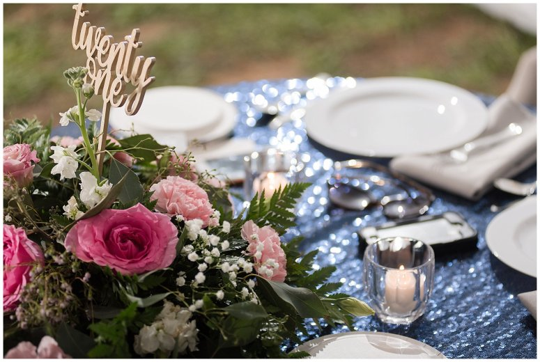 Navy Blue and Pink October Backyard North Carolina Wedding Virginia Wedding Photographers_7068