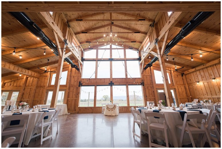 Navy Blue Blue Ridge Mountain Wedding Faithbrooke Farm Vineyard Luray Virginia Wedding Photographers_7119