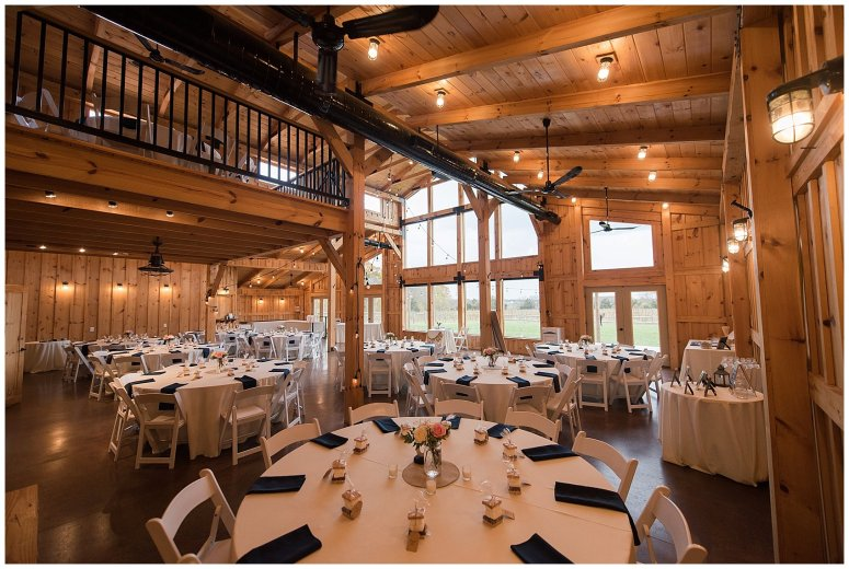 Navy Blue Blue Ridge Mountain Wedding Faithbrooke Farm Vineyard Luray Virginia Wedding Photographers_7120