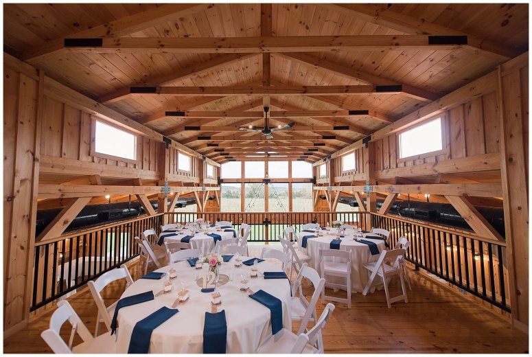 Navy Blue Blue Ridge Mountain Wedding Faithbrooke Farm Vineyard Luray Virginia Wedding Photographers_7122