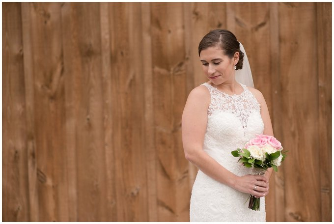 Navy Blue Blue Ridge Mountain Wedding Faithbrooke Farm Vineyard Luray Virginia Wedding Photographers_7181