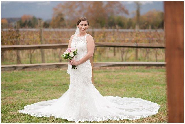 Navy Blue Blue Ridge Mountain Wedding Faithbrooke Farm Vineyard Luray Virginia Wedding Photographers_7184