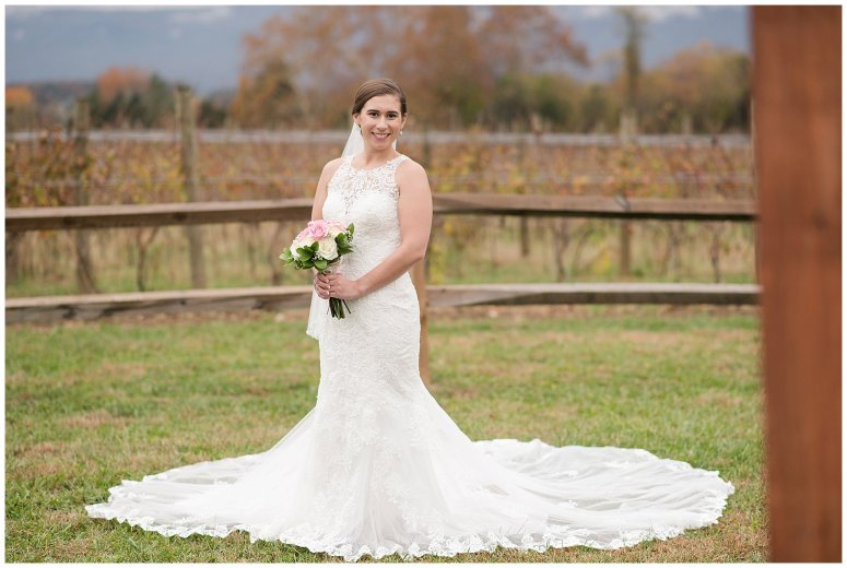 Navy Blue Blue Ridge Mountain Wedding Faithbrooke Farm Vineyard Luray Virginia Wedding Photographers_7184