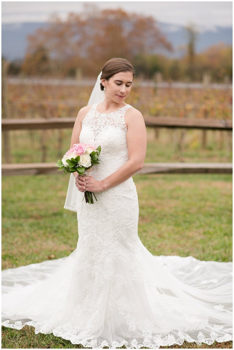 Navy Blue Blue Ridge Mountain Wedding Faithbrooke Farm Vineyard Luray Virginia Wedding Photographers_7185