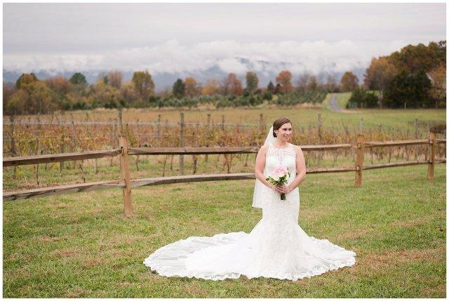 Navy Blue Blue Ridge Mountain Wedding Faithbrooke Farm Vineyard Luray Virginia Wedding Photographers_7186