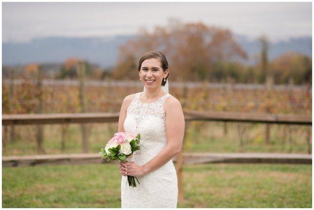Navy Blue Blue Ridge Mountain Wedding Faithbrooke Farm Vineyard Luray Virginia Wedding Photographers_7187