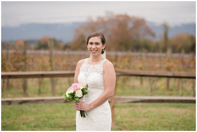 Navy Blue Blue Ridge Mountain Wedding Faithbrooke Farm Vineyard Luray Virginia Wedding Photographers_7187