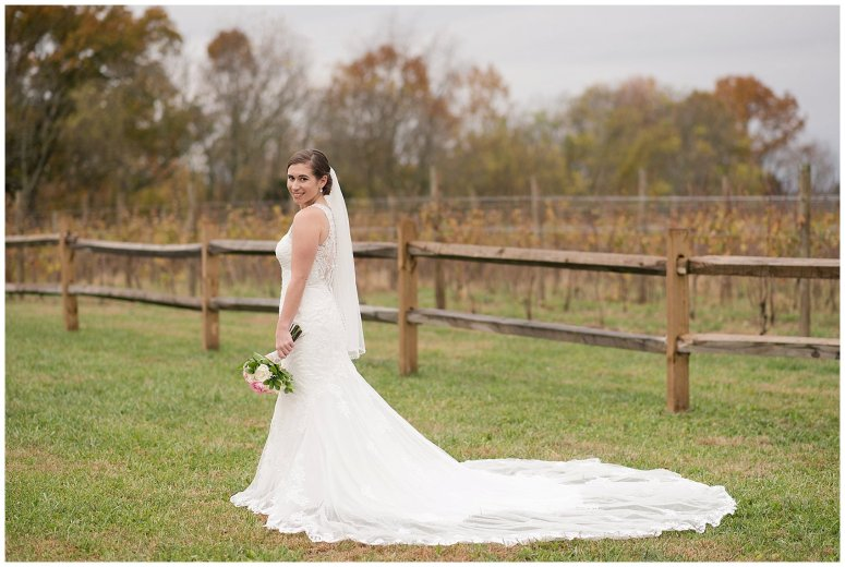 Navy Blue Blue Ridge Mountain Wedding Faithbrooke Farm Vineyard Luray Virginia Wedding Photographers_7190