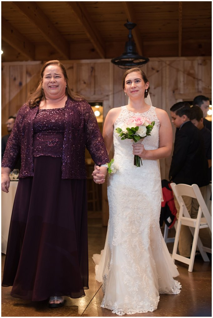Navy Blue Blue Ridge Mountain Wedding Faithbrooke Farm Vineyard Luray Virginia Wedding Photographers_7207