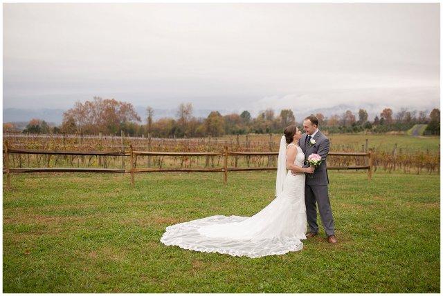 Navy Blue Blue Ridge Mountain Wedding Faithbrooke Farm Vineyard Luray Virginia Wedding Photographers_7239