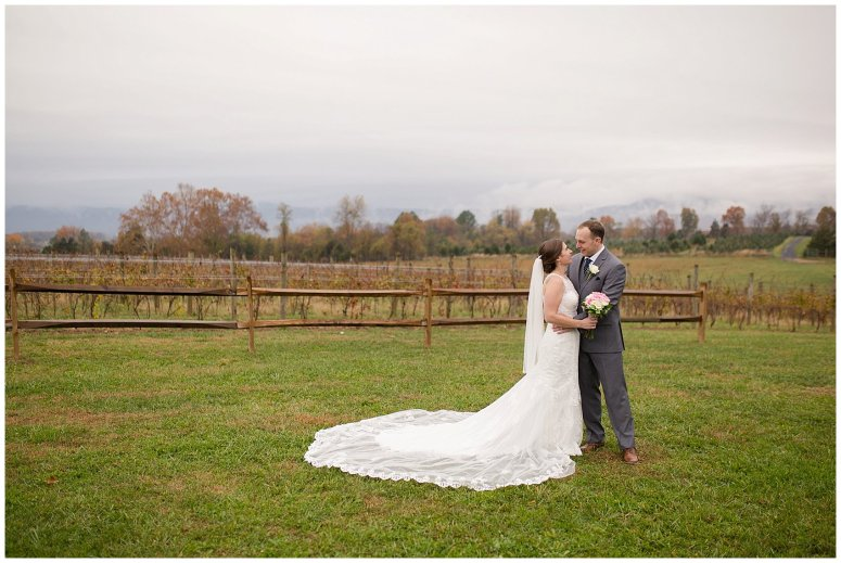 Navy Blue Blue Ridge Mountain Wedding Faithbrooke Farm Vineyard Luray Virginia Wedding Photographers_7239