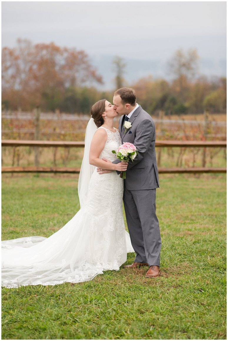 Navy Blue Blue Ridge Mountain Wedding Faithbrooke Farm Vineyard Luray Virginia Wedding Photographers_7243