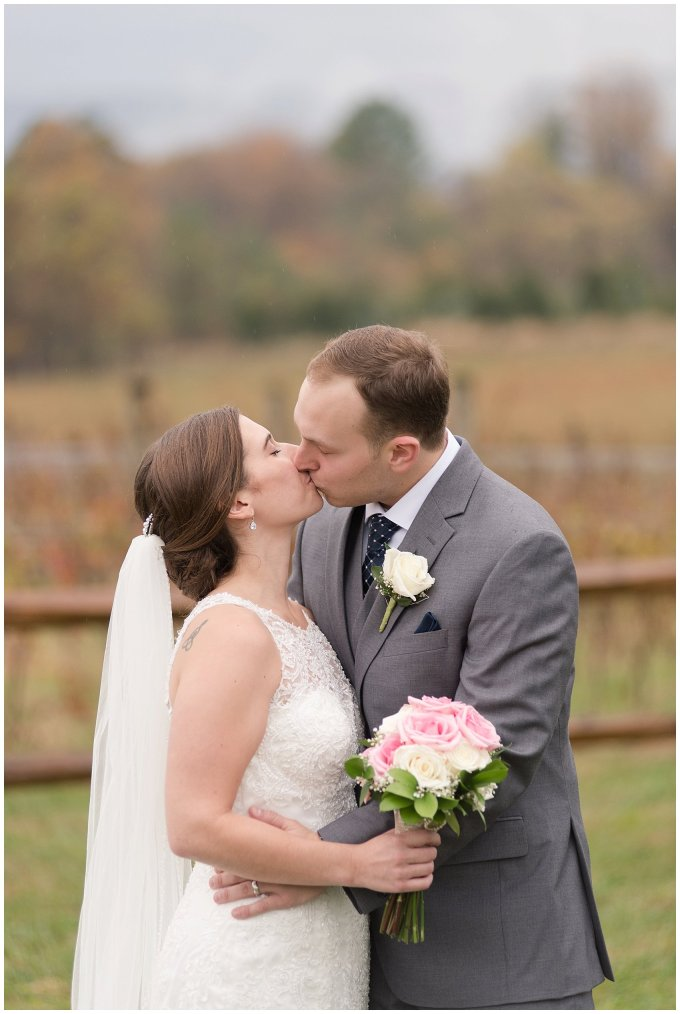Navy Blue Blue Ridge Mountain Wedding Faithbrooke Farm Vineyard Luray Virginia Wedding Photographers_7244