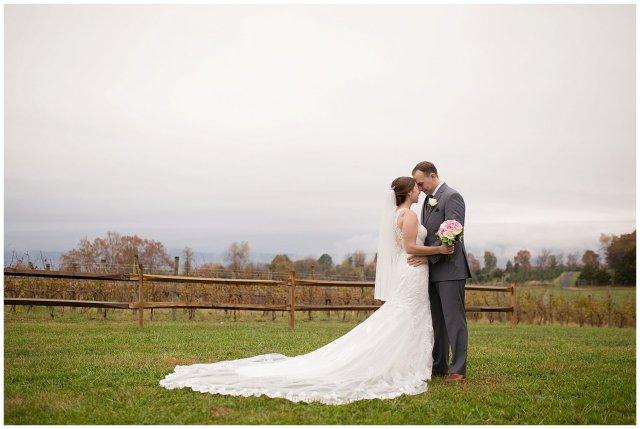 Navy Blue Blue Ridge Mountain Wedding Faithbrooke Farm Vineyard Luray Virginia Wedding Photographers_7245