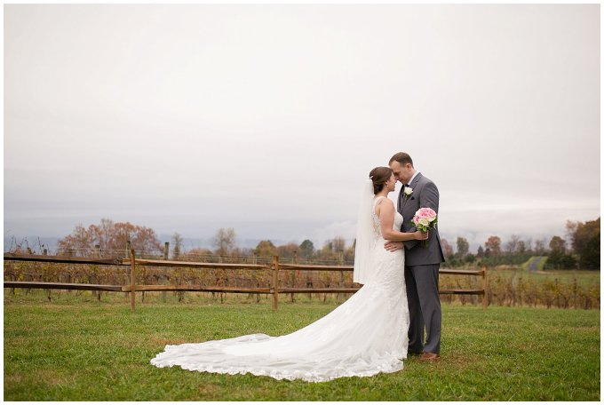 Navy Blue Blue Ridge Mountain Wedding Faithbrooke Farm Vineyard Luray Virginia Wedding Photographers_7245