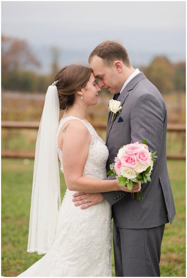 Navy Blue Blue Ridge Mountain Wedding Faithbrooke Farm Vineyard Luray Virginia Wedding Photographers_7246