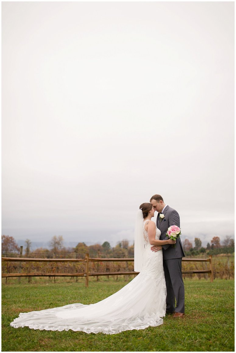 Navy Blue Blue Ridge Mountain Wedding Faithbrooke Farm Vineyard Luray Virginia Wedding Photographers_7247