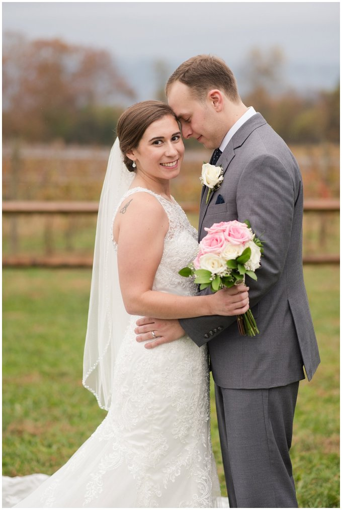 Navy Blue Blue Ridge Mountain Wedding Faithbrooke Farm Vineyard Luray Virginia Wedding Photographers_7248