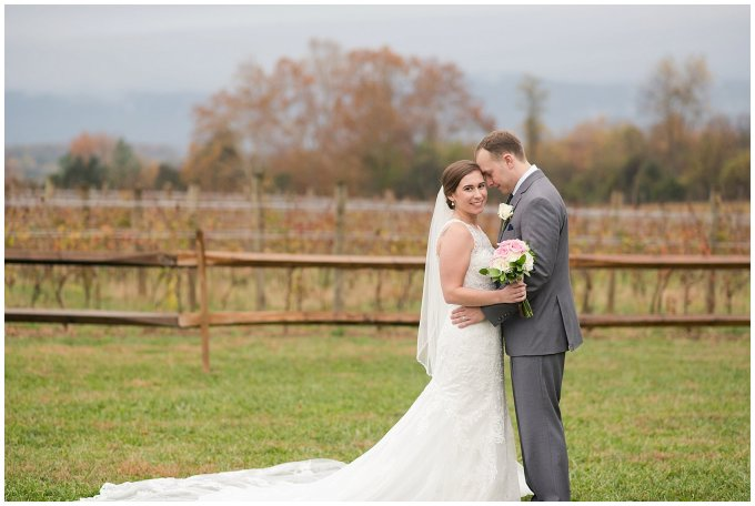 Navy Blue Blue Ridge Mountain Wedding Faithbrooke Farm Vineyard Luray Virginia Wedding Photographers_7255