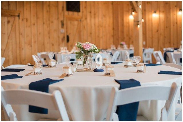 Navy Blue Blue Ridge Mountain Wedding Faithbrooke Farm Vineyard Luray Virginia Wedding Photographers_7282