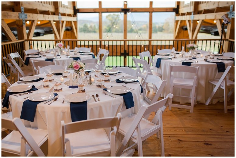 Navy Blue Blue Ridge Mountain Wedding Faithbrooke Farm Vineyard Luray Virginia Wedding Photographers_7284