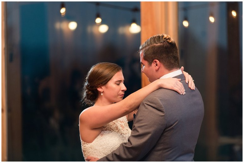 Navy Blue Blue Ridge Mountain Wedding Faithbrooke Farm Vineyard Luray Virginia Wedding Photographers_7297